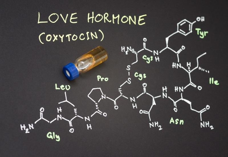 L'ossitocina: l'ormone del sesso e dell'amore